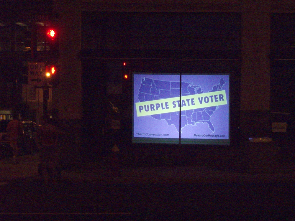 Purple State Voter